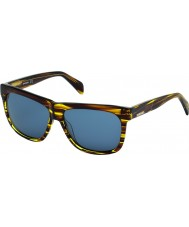 Diesel DL0100 Brown Stripe Sunglasses