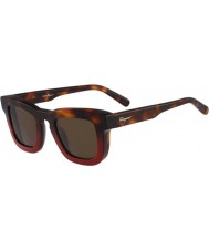Salvatore Ferragamo Mens SF771S Havana Red Sunglasses