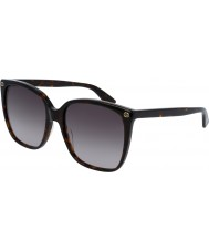 Gucci Ladies GG0022S 003 Sunglasses