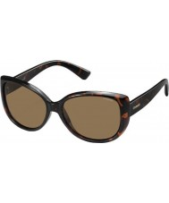 Polaroid Ladies PLD4031-S Q3V IG Dark Havana Polarized Sunglasses