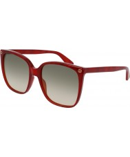 Gucci Ladies GG0022S 006 Sunglasses
