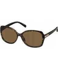 Polaroid Ladies PLD5011-S V08 IG Havana Polarized Sunglasses