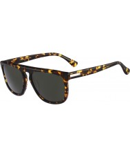 Calvin Klein Platinum CK4250S Tortoiseshell Sunglasses