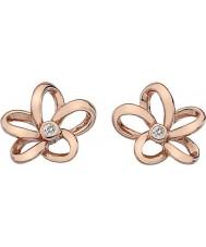 Hot Diamonds DE453 Ladies Paradise Rose Gold Plated Earrings