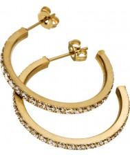 Edblad 216130156 Ladies Glow Earrings