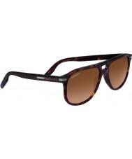 Serengeti 8470 Giacomo Tortoiseshell Sunglasses