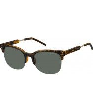 Polaroid Mens PLD2031-S NHO RC Havana Gold Polarized Sunglasses