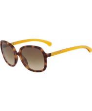 Calvin Klein Jeans CKJ754S Warm Tortoiseshell Sunglasses