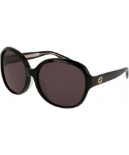Gucci Ladies GG0080SK 001 Sunglasses