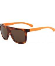Calvin Klein Jeans CKJ756S Amber Tortoiseshell Sunglasses
