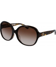 Gucci Ladies GG0080SK 003 Sunglasses