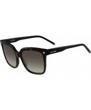 Calvin Klein Collection Ladies CK4323S 214 Sunglasses