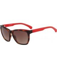 Calvin Klein Jeans CKJ757S Amber Tortoiseshell Sunglasses