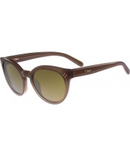 Chloe Ladies CE691S Boxwood Light Brown Sunglasses