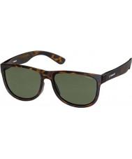 Polaroid Premium PLD3004-S PHT H8 Havana Polarized Sunglasses