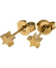 Edblad 216130003 Ladies Star Earrings