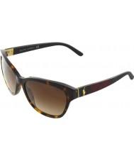 Polo Ralph Lauren PH4093 56 Dark Havana 550213 Sunglasses
