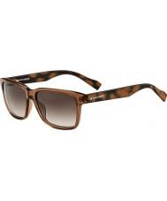 BOSS Orange Mens BO 0131-S 1PD HA Brown Pattern Sunglasses