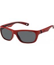 Polaroid Kids P0113 04A Y2 Havana Polarized Sunglasses
