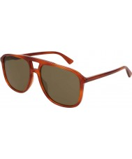 Gucci Mens GG0262S 002 58 Sunglasses