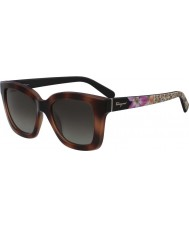 Salvatore Ferragamo Ladies SF858S-214 Sunglasses