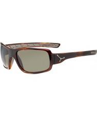 Cebe Changpa Shiny Tortoiseshell Sunglasses