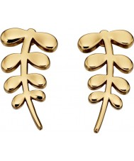 Orla Kiely E5433 Ladies Buddy Earrings