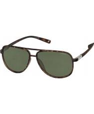 Polaroid Premium PLD2004-S PTX H8 Havana Polarized Sunglasses