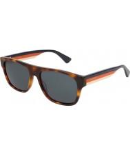 Gucci Mens GG0341S 004 56 Sunglasses