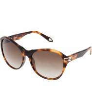Givenchy Ladies SGV925-09AJ Brown Havana Sunglasses
