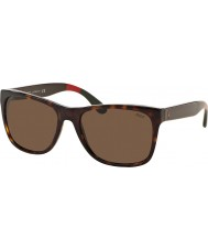Polo Ralph Lauren PH4106 57 Casual Living Shiny Dark Havana 556873 Sunglasses