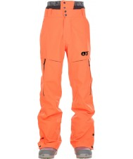 Picture Mens Object Ski Pants