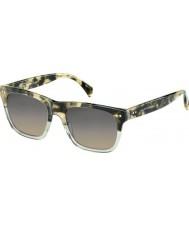 Tommy Hilfiger TH 1238-S XGW R4 Tortoiseshell Sunglasses
