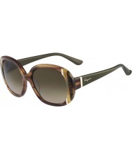 Salvatore Ferragamo Ladies SF674S Striped Brown Sunglasses