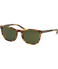 Polo Ralph Lauren PH4107 53 Classic Flair Vintage New Jerry Tortoiseshell 535171 Sunglasses