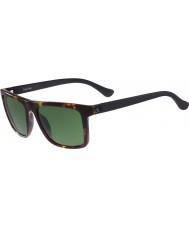 Calvin Klein Platinum Ladies CK3177S Tortoiseshell Sunglasses