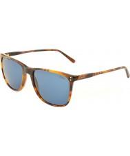 Polo Ralph Lauren PH4102 55 Classic Flair Havana 501780 Sunglasses