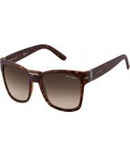 Oxydo Mens OX 1032-S V08 CC Tortoiseshell Sunglasses