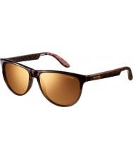 Carrera Ladies Carrera 5007 Gold Brown Sunglasses